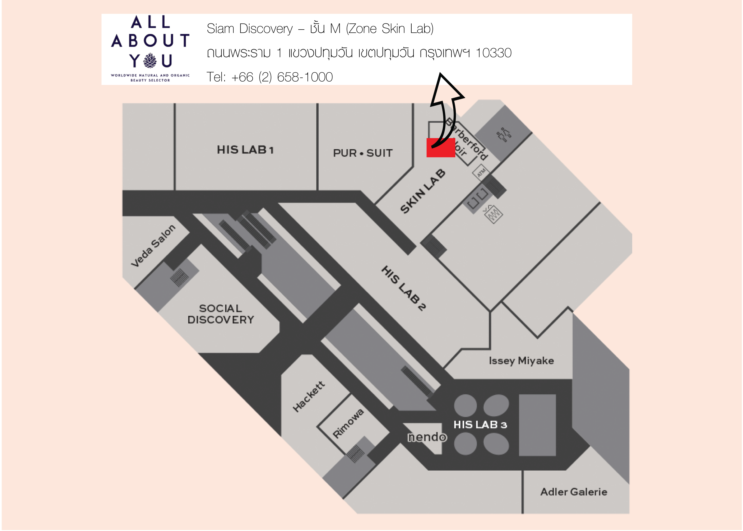 AAU-Siam Discovery