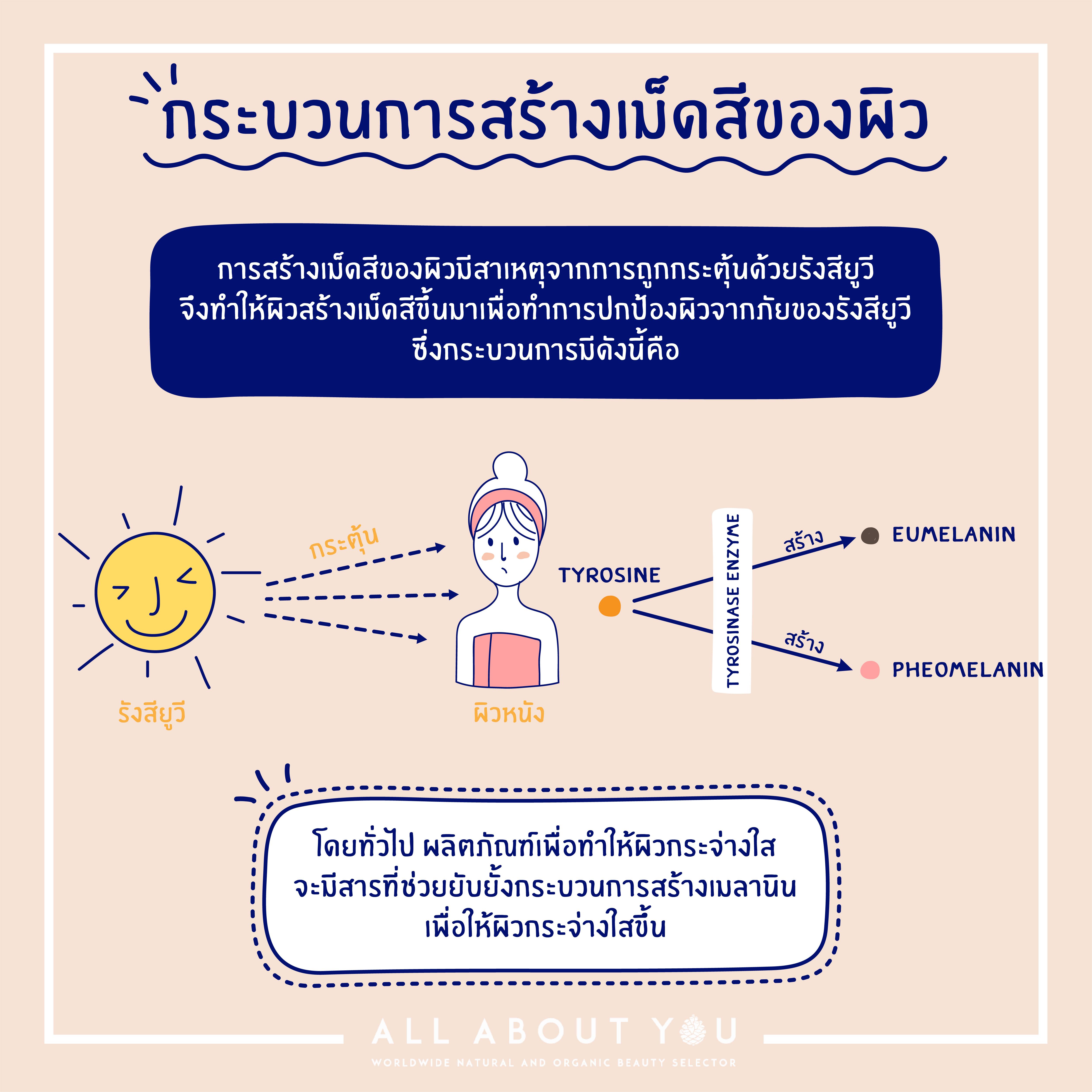Infographic01-08